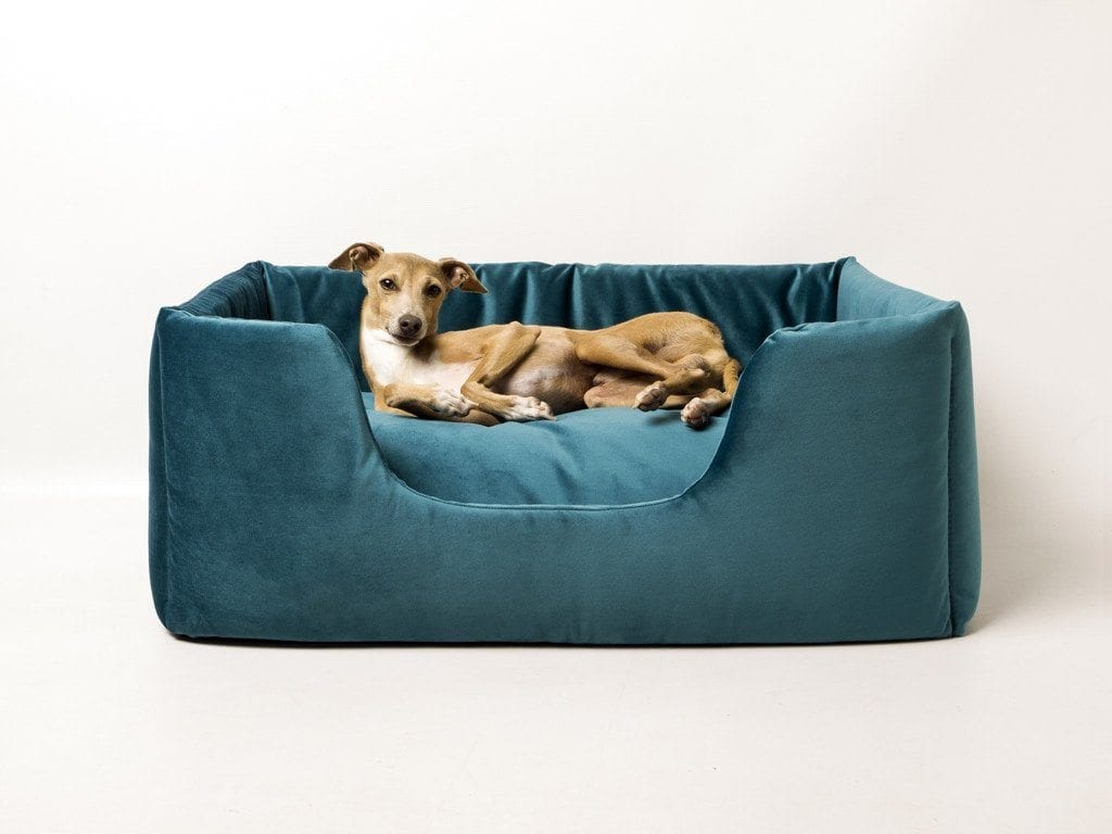 Relatively Charlie Chau Deeply Dishy Luxury Pet Bed - Velour Contrast  RB05