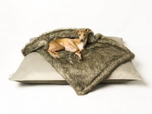 charley-chau-luxury-dog-bed-velour-cloud-silver