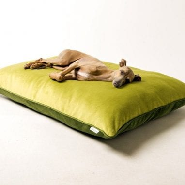 charley-chau-luxury-dog-bed-velour-lime-leaf-
