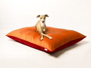 charley-chau-luxury-dog-bed-velour-tangerine