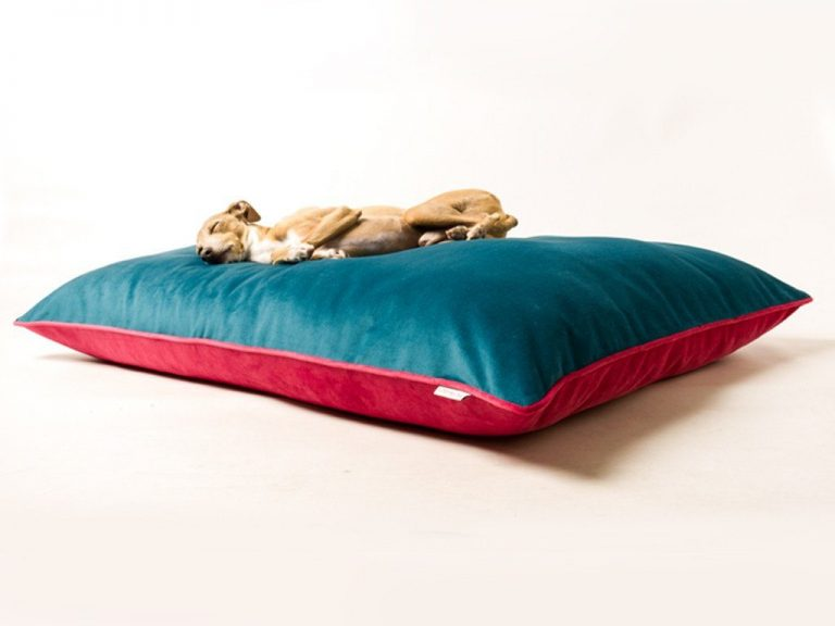 charley-chau-luxury-dog-bed-velour-teal-fuschia