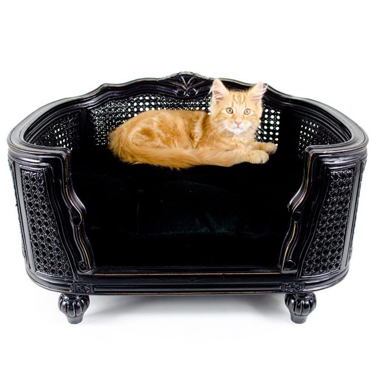 lord lou luxury cat bed Antoinette_