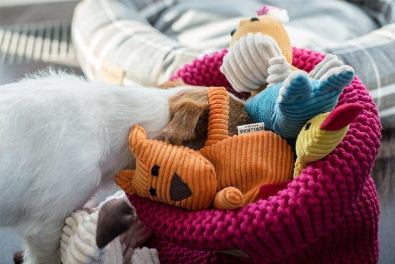 BowlAndBone-Republic-toy-for-dog-DUCKIE