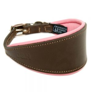 dogs and horses -COLLAR-HOUND