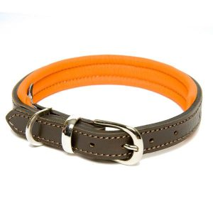 dogs and horses -luxury dog collar