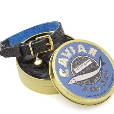 Cheshire+&+Wain+-+Caviar+luxury cat Collar