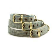 Tweedmill Dog-Collar-313
