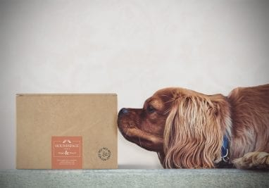 hygge and hound