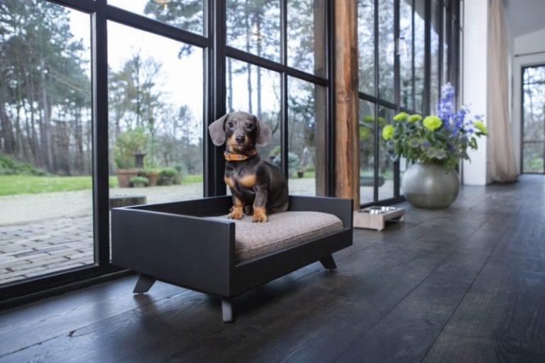 lord lou luxury dog bed Jason-black