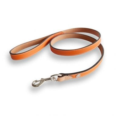 lord lou Ascot-leash