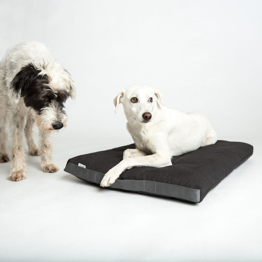 Cloud7 Dog Bed Siesta Heather Brown_Rescue Dogs