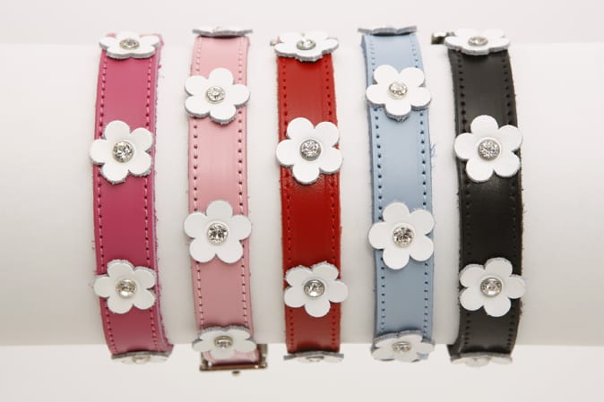 DOGUE Foxy Flowers Collar 1