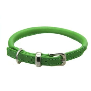 dogs and horses rolled green collar
